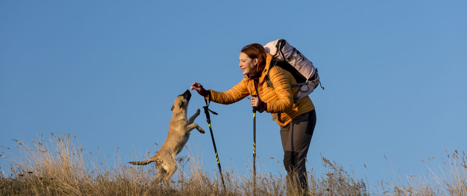 Female hiker has break on her walk and plays with her dog