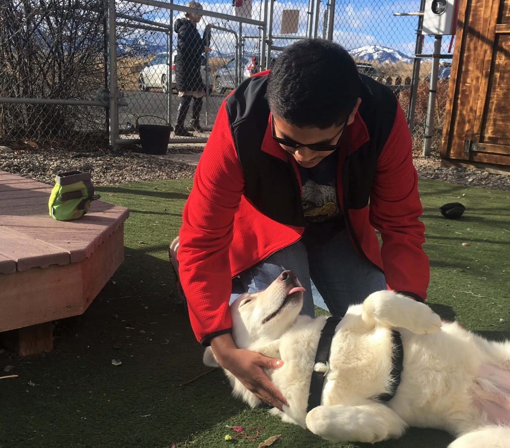 Dog training lessons for teens at our local shelter